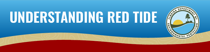 Understanding Red Tide Info-graphic thumbnail