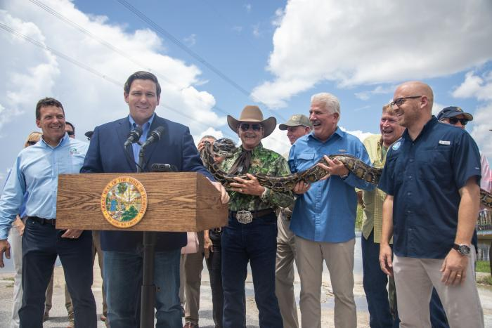 Python Removal Efforts To Protect The Greater Everglades